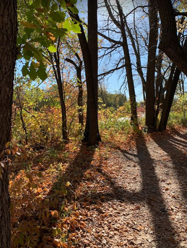 walking in Beaudry Provincial Park